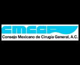 Mexican plastic surgeons board logo